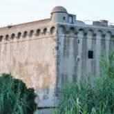 Torre Saline Albinia (A scelta)