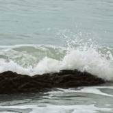 mare della feniglia (A scelta)